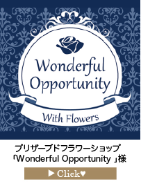 「Wonderful-Opportunity-」様